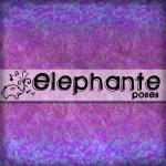 //elephante poses//